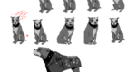 Each pose and expression has to be individually mapped before animation